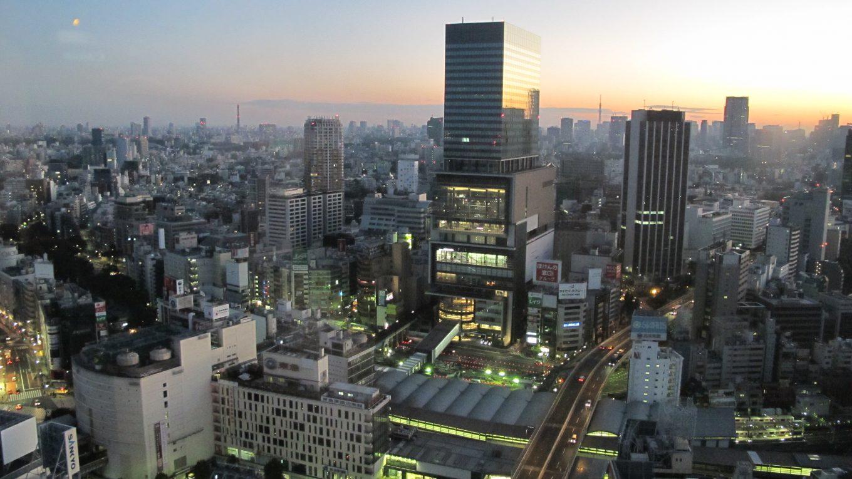 windows on the japanese world